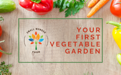 Your First Summer Vegetable Garden