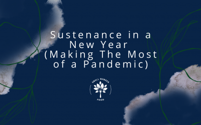 Sustenance in a New Year (Making The Most of a Pandemic)